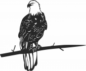 Bald eagle on a branche wall art  - For Laser Cut DXF CDR SVG Files - free download