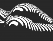 In Honor of Lucien Clergue  - For Laser Cut DXF CDR SVG Files - free download